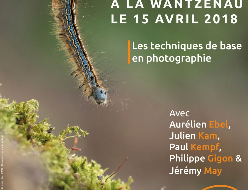 Stage Photo Nature – 15 avril 2018