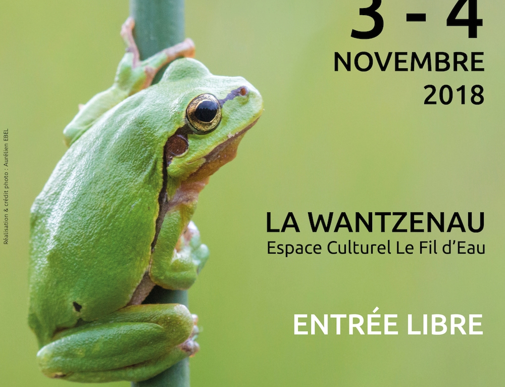 Concours Photo Nature 2018